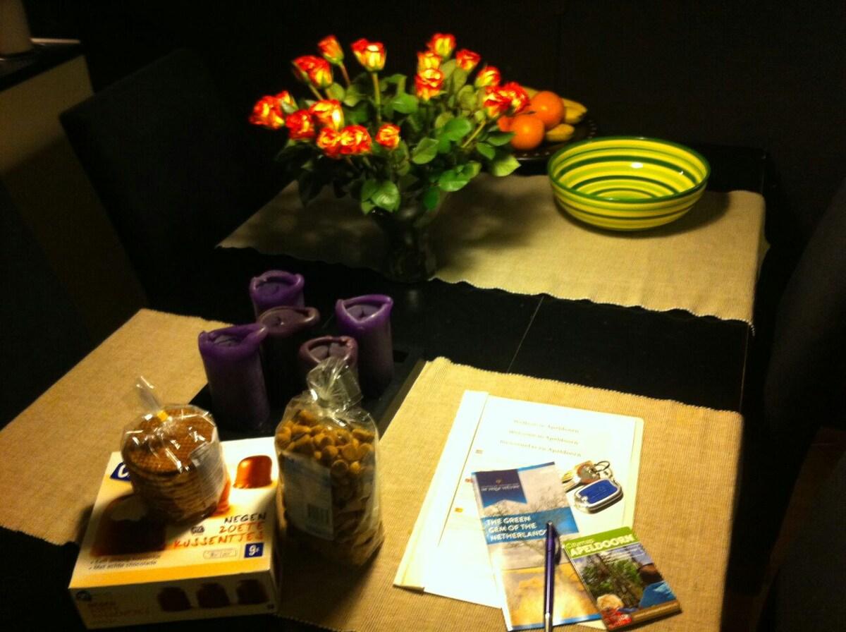 Cozy apartement in Apeldoorn