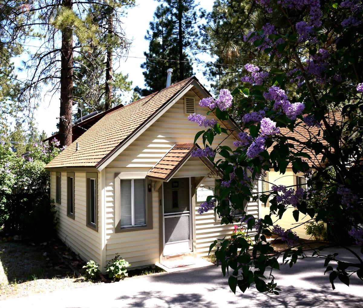 Cozy Big Bear Cabin - Wild Flower