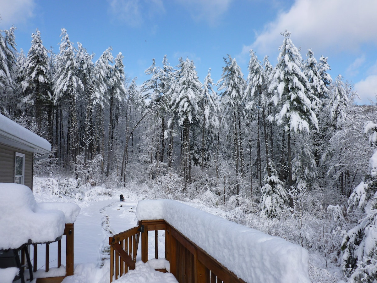 This is the view from the deck after a nice snowfall.  Berkshire East is a great place to ski.