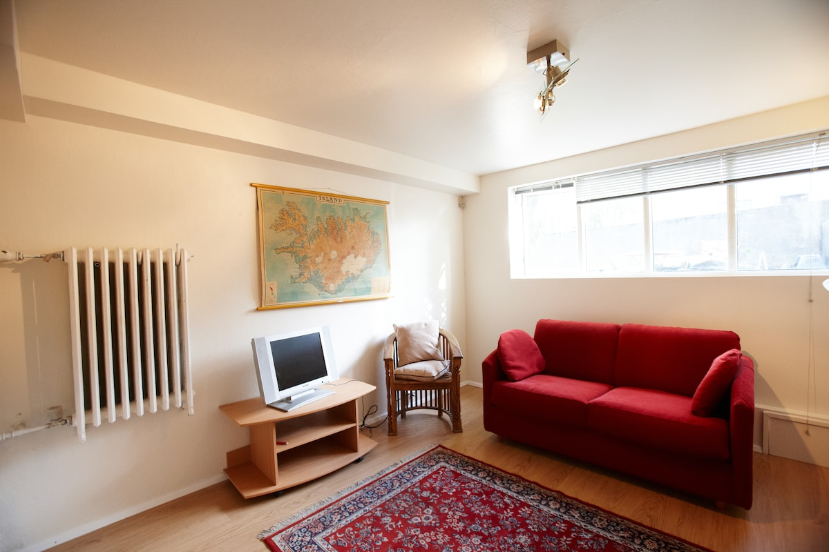 Living room, and kitchenette  area, the sofa bed is actually quite comfy