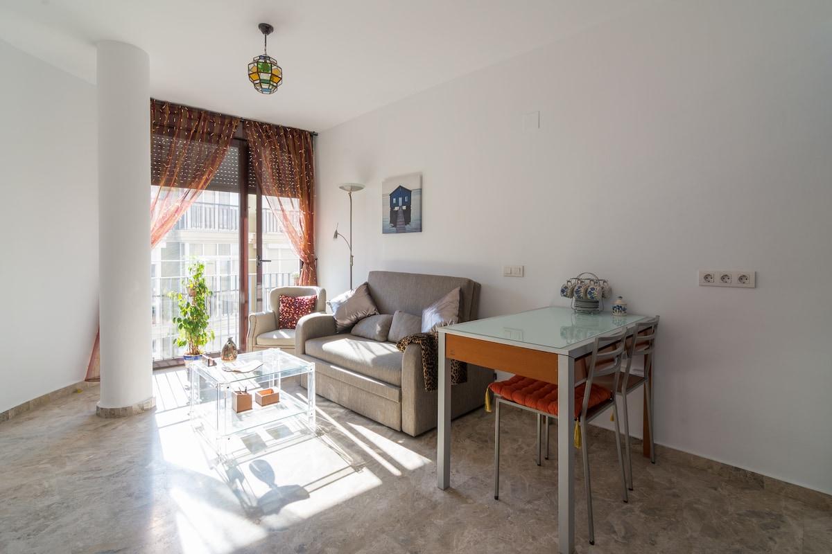 Appartment Malaga center