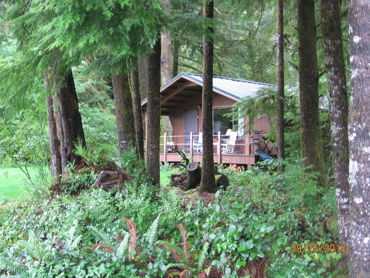 Cozy riverside/rain forest cabin