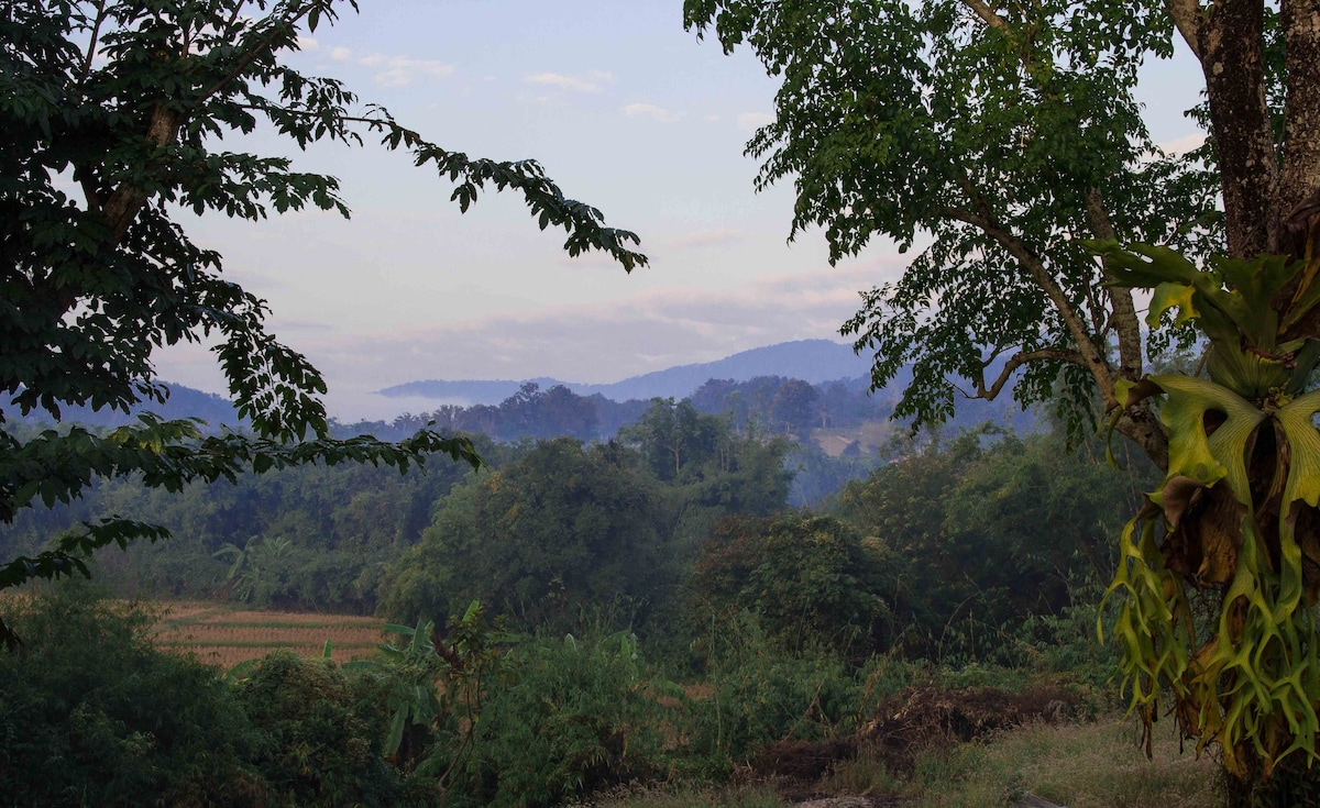 Mountain view & lush garden