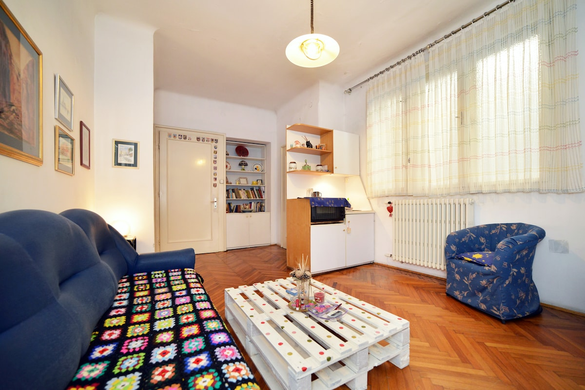 Lovely apt in the centre of Zagreb!
