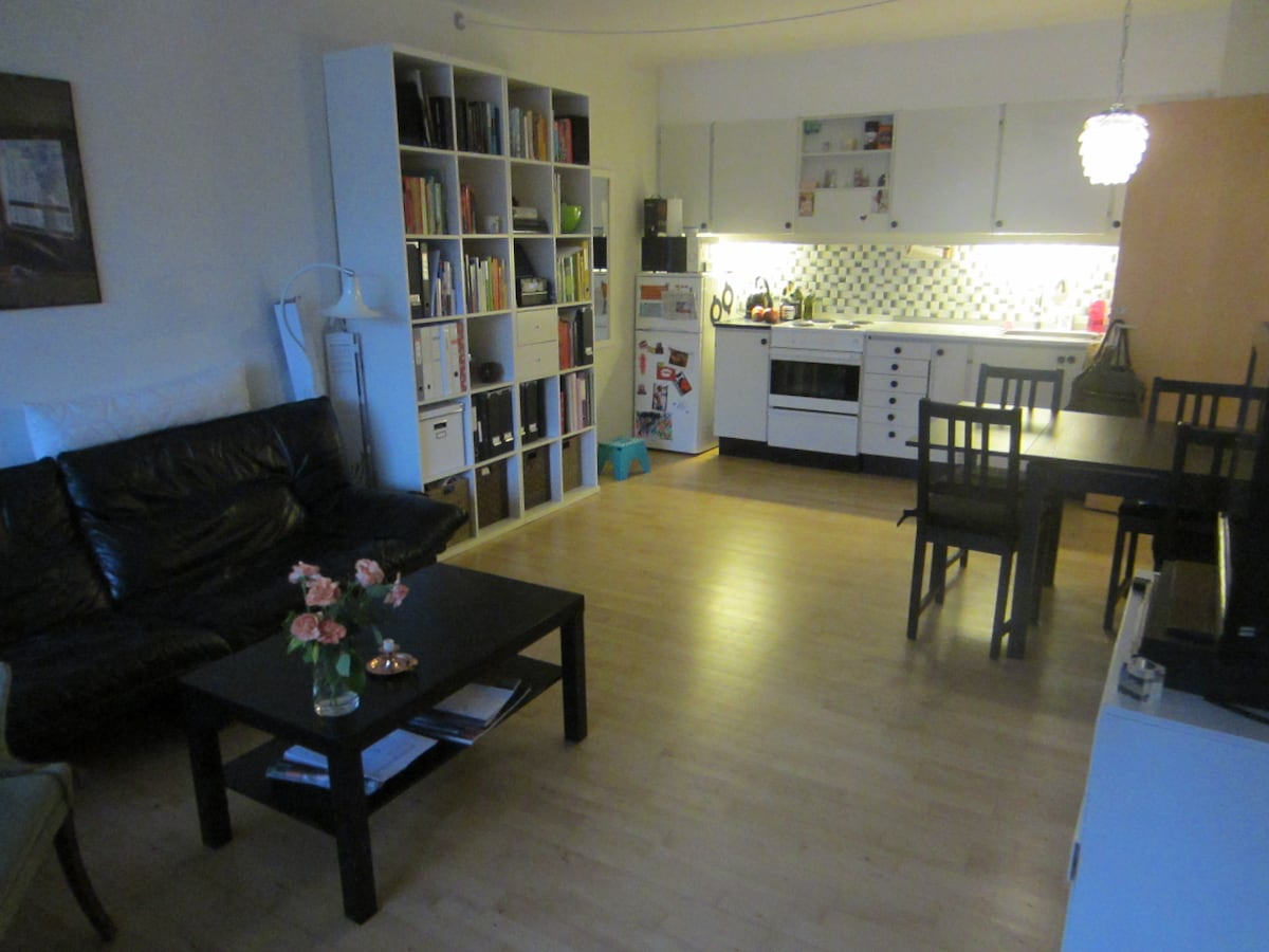 Cozy appartment in the heart of CPH