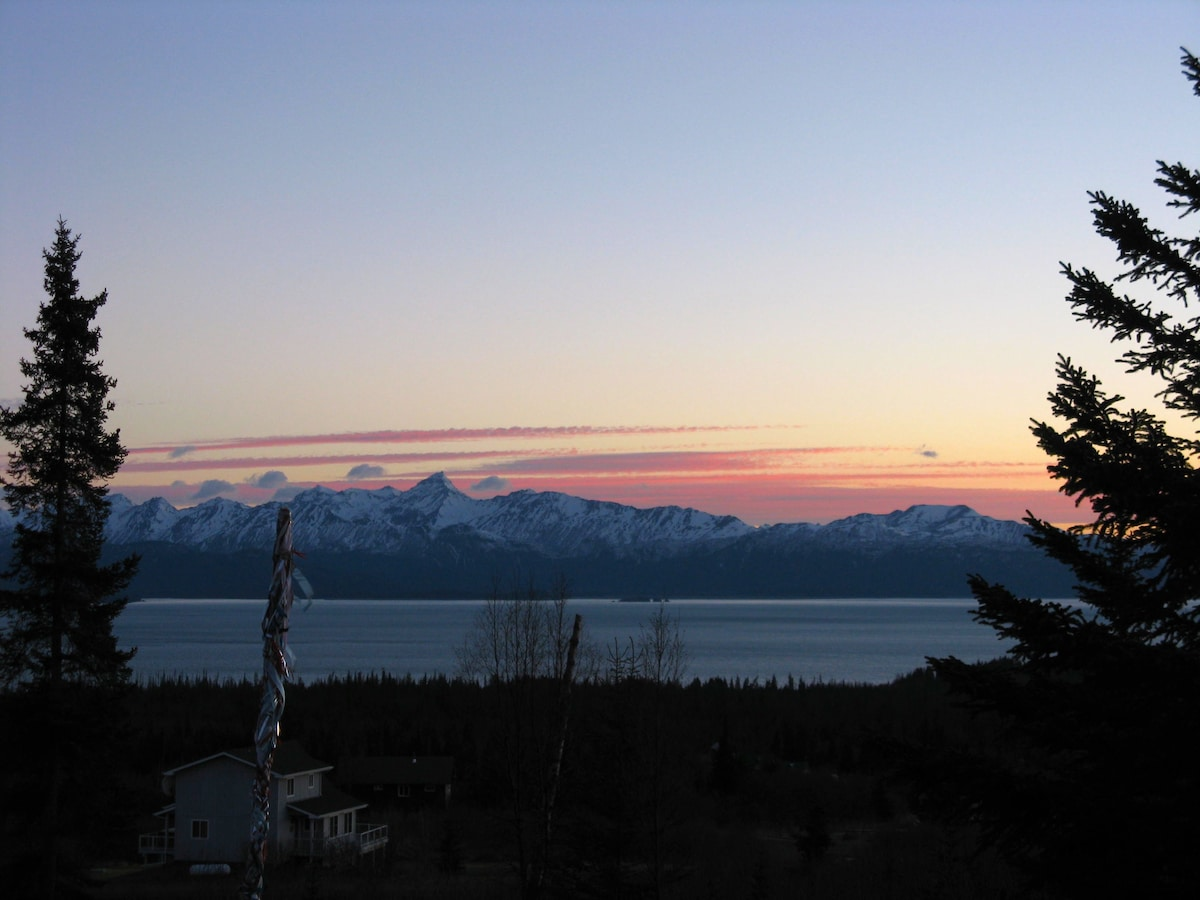 Views of Kachemak Bay & Homer Spit