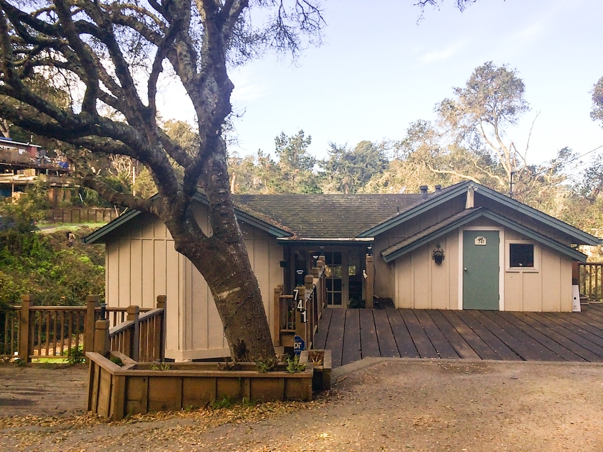 Aptos home near beach, dogs ok!