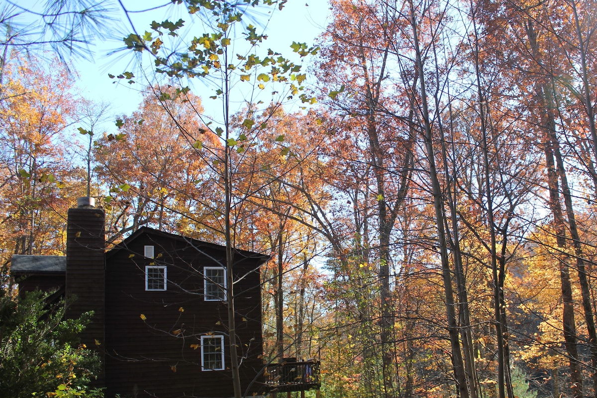Nature lovers escape to Ellijay