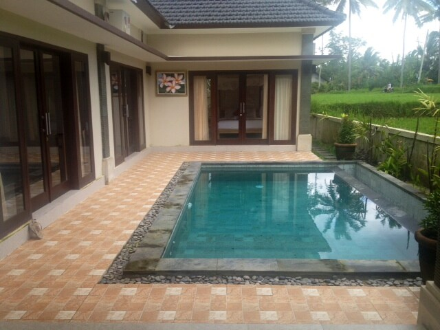 Lovely room with pool in new villa
