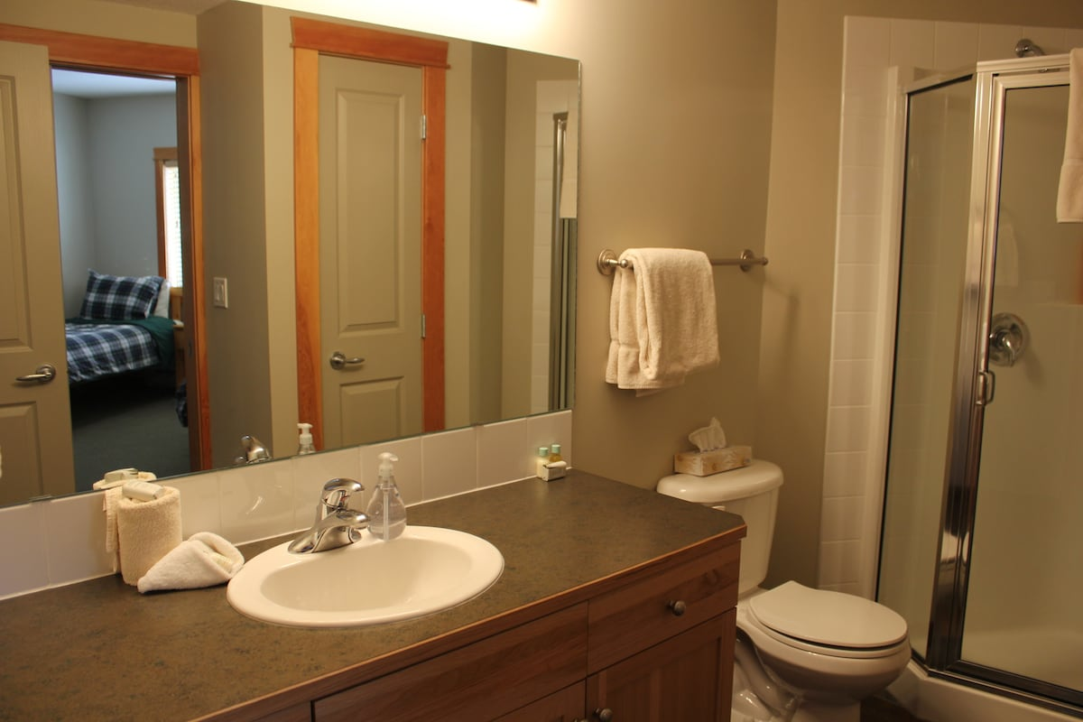 Main bathroom (adjoining second bedroom)
