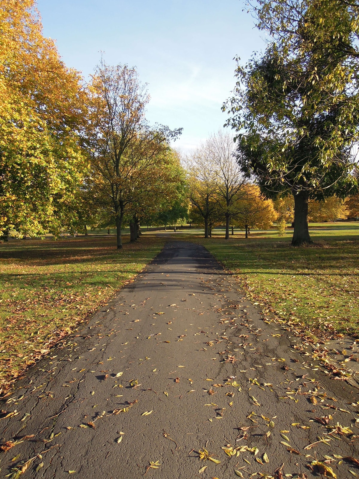 A gentle stroll, jogging or running can be undertaken in Brockwell Park