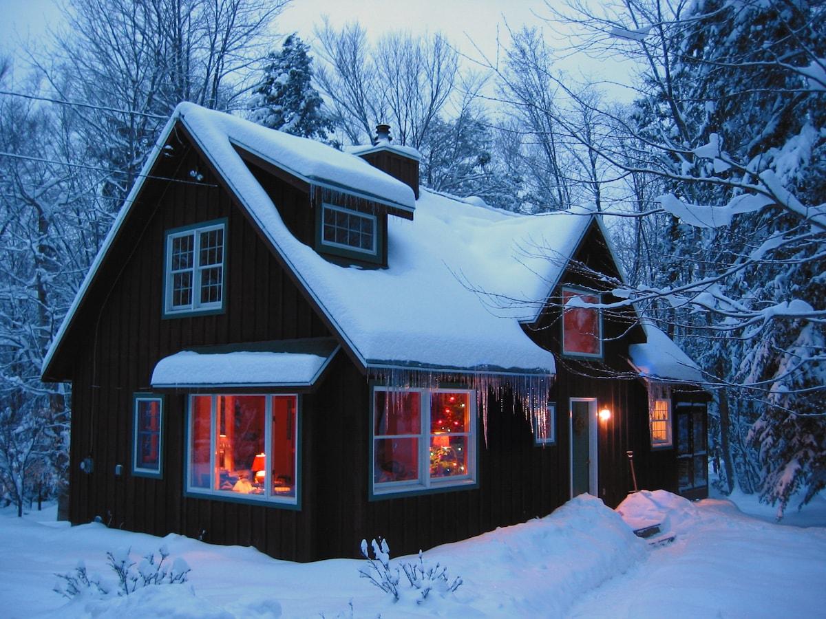 Doh-Ray Cabin in a Catskills winter