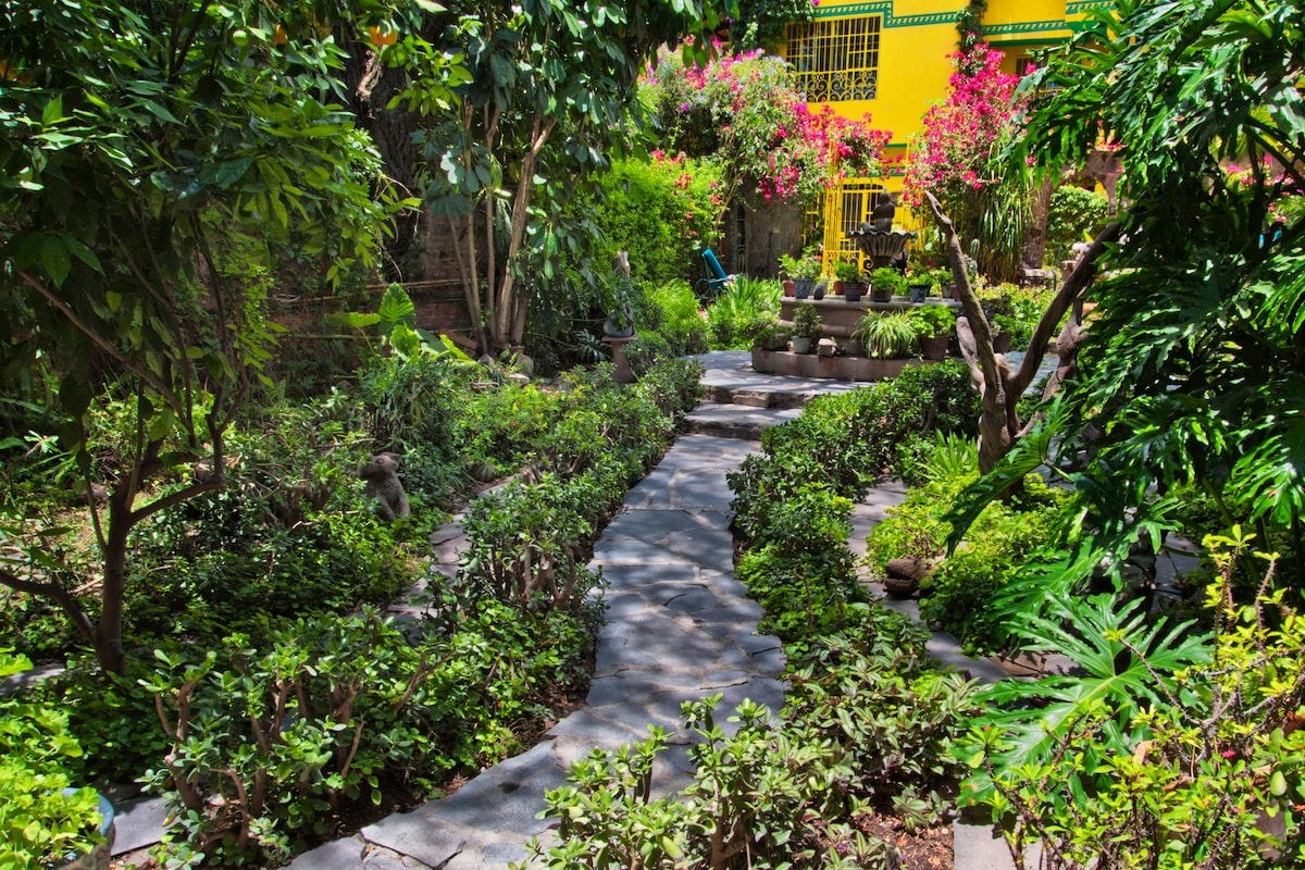 Through the lush garden toward the house