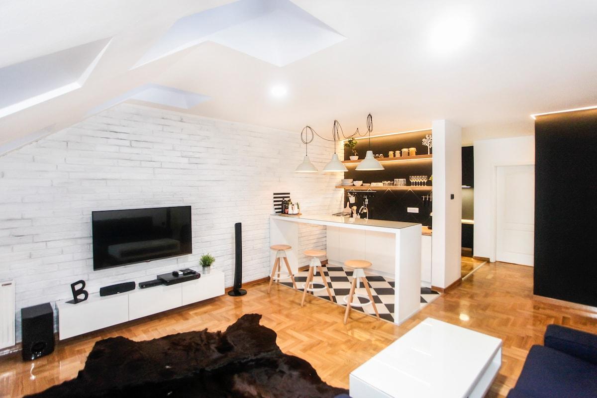 Unique & Modern Apartment Novi Sad