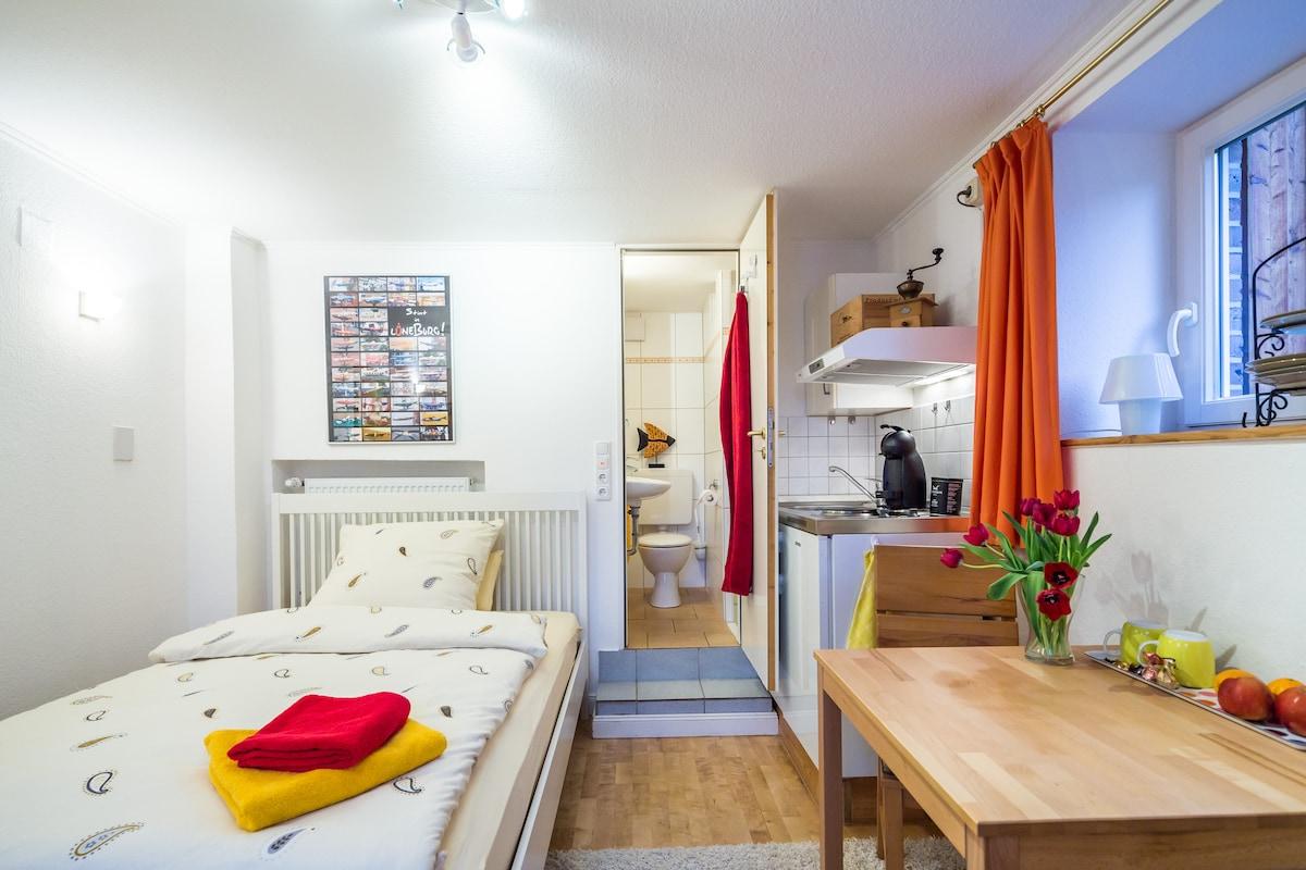 Lovely mini-flat in Lueneburg