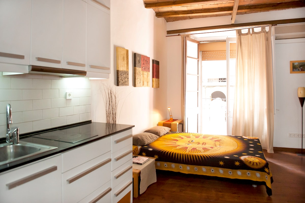 main hall: kitchen, table&chairs, sofa bed, litttle balcony (photo: studio or room nr.2)