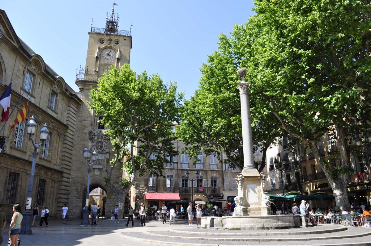 Splendid apt in center of Aix
