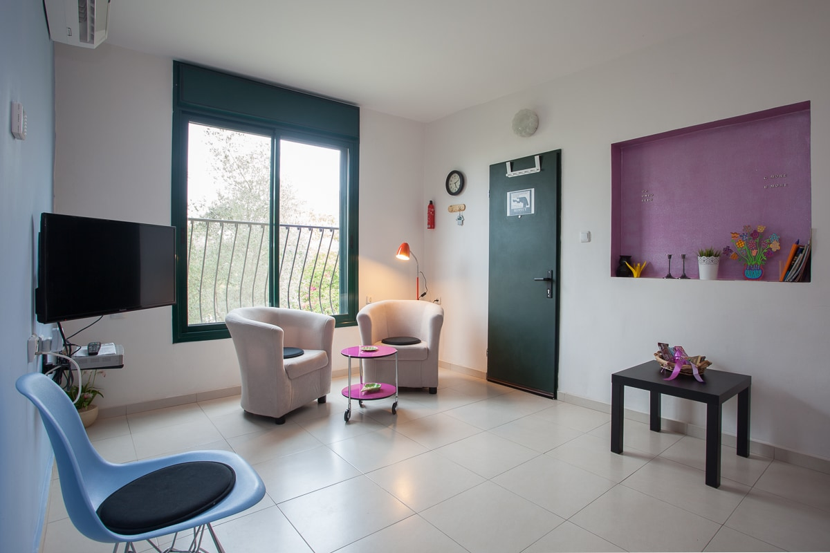 Living room : green entry door, cable TV, air conditioning, large window with garden view , sofa bed