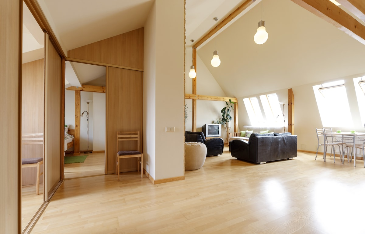 Just renovated sunny loft apartment 75 sq.m. in the center of Riga. Full of light, well set up, centrally located.
