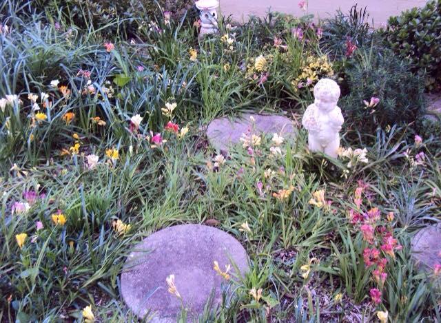 Jenny's Garden Place