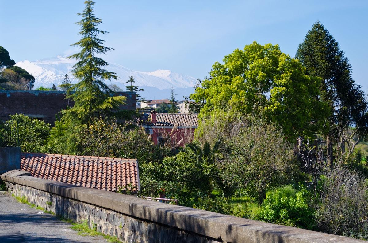 Loft Panoramic Tra Catania e l'Etna