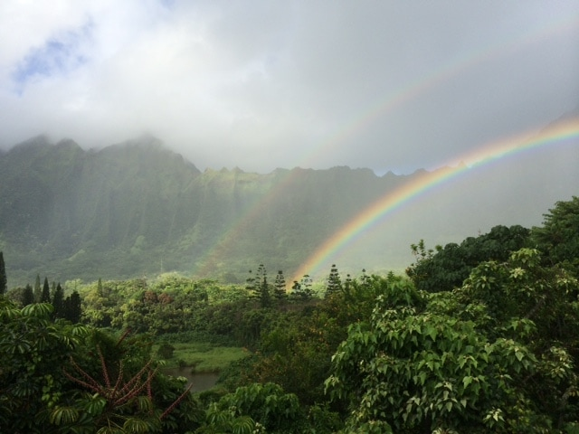 Koolau View