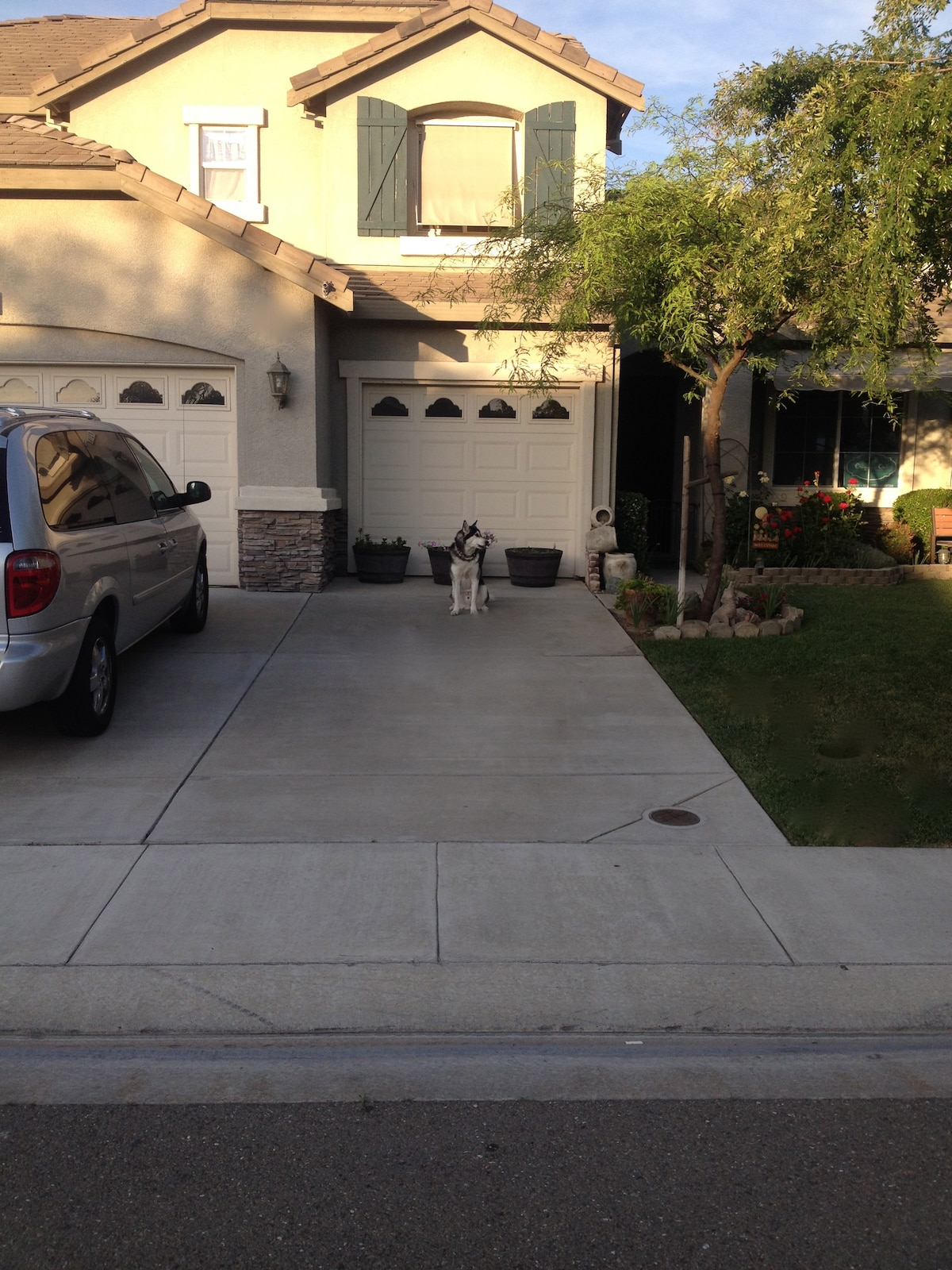 Here is your parking space. See Koda waiting.