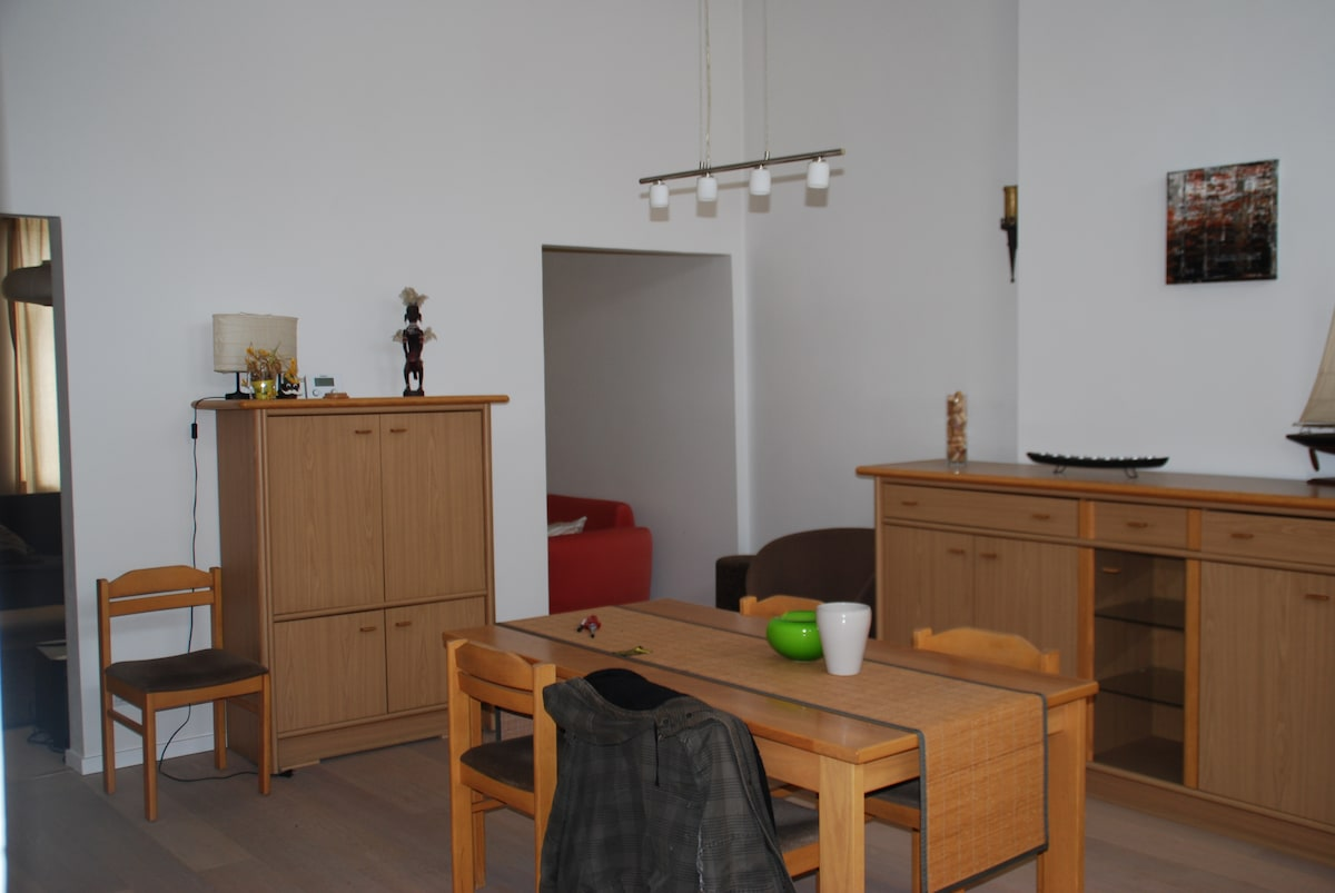 Spacious appartment