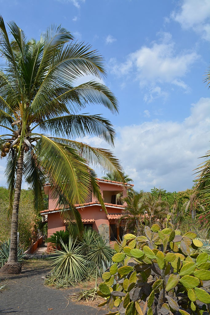 Punta Paraiso Beachfront Bungalow+