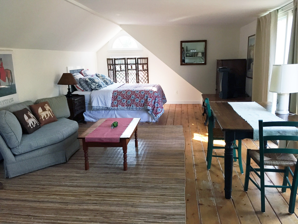 Large sun-drenched studio with queen-size bed, seating area, reading corner, and  breakfast nook.