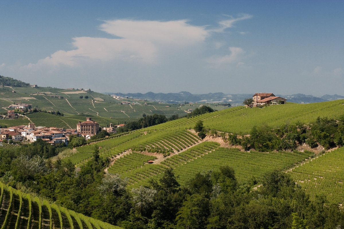 Agriturismo in heart of BAROLO.