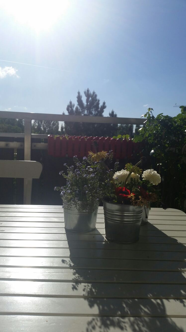 Amply,sunny 1 BD with large balcony