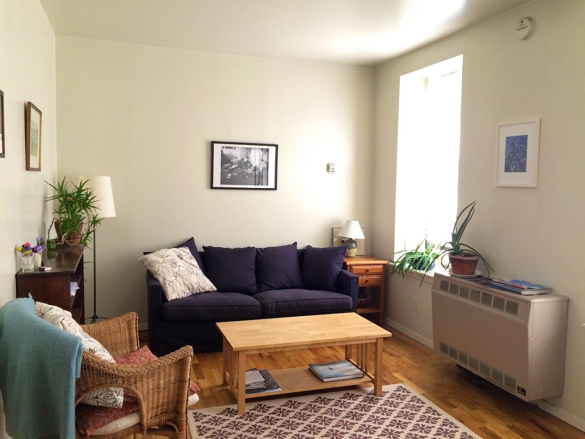 Sunny One-Bedroom Near Central Park