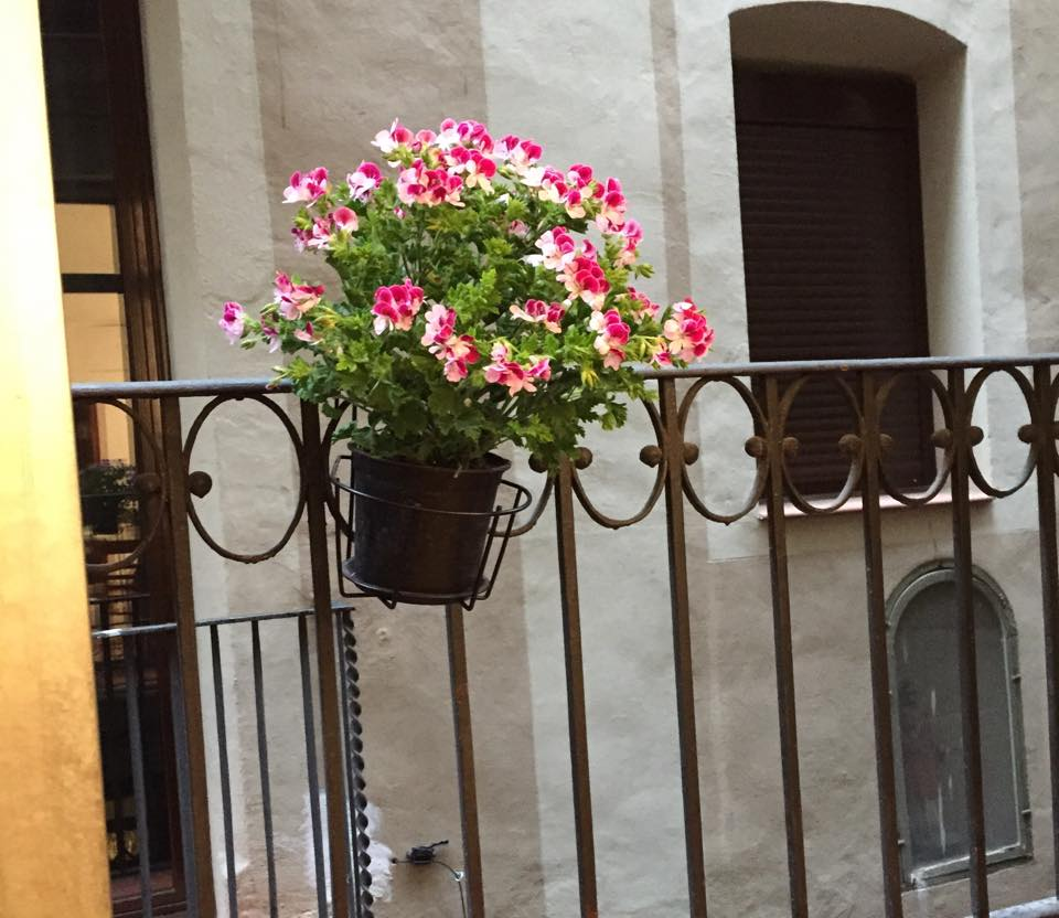 Sweet apartment in the heart BCN