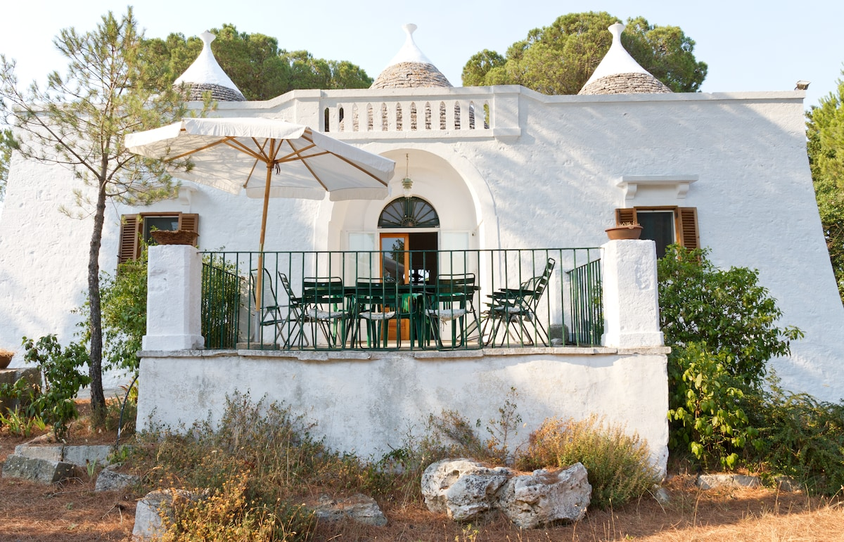 trullo with pinewood, Valle d'Itria