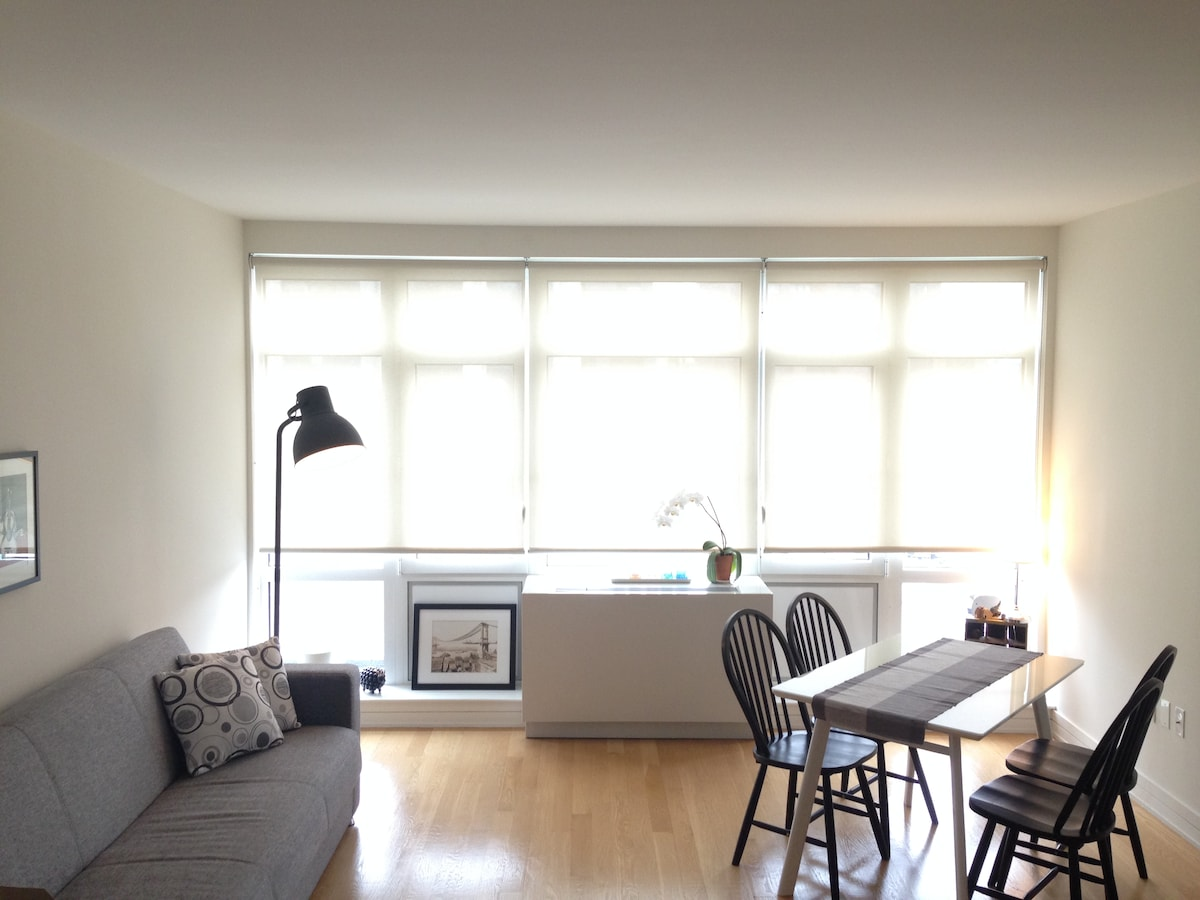 Modern 1 BR in Williamsburg