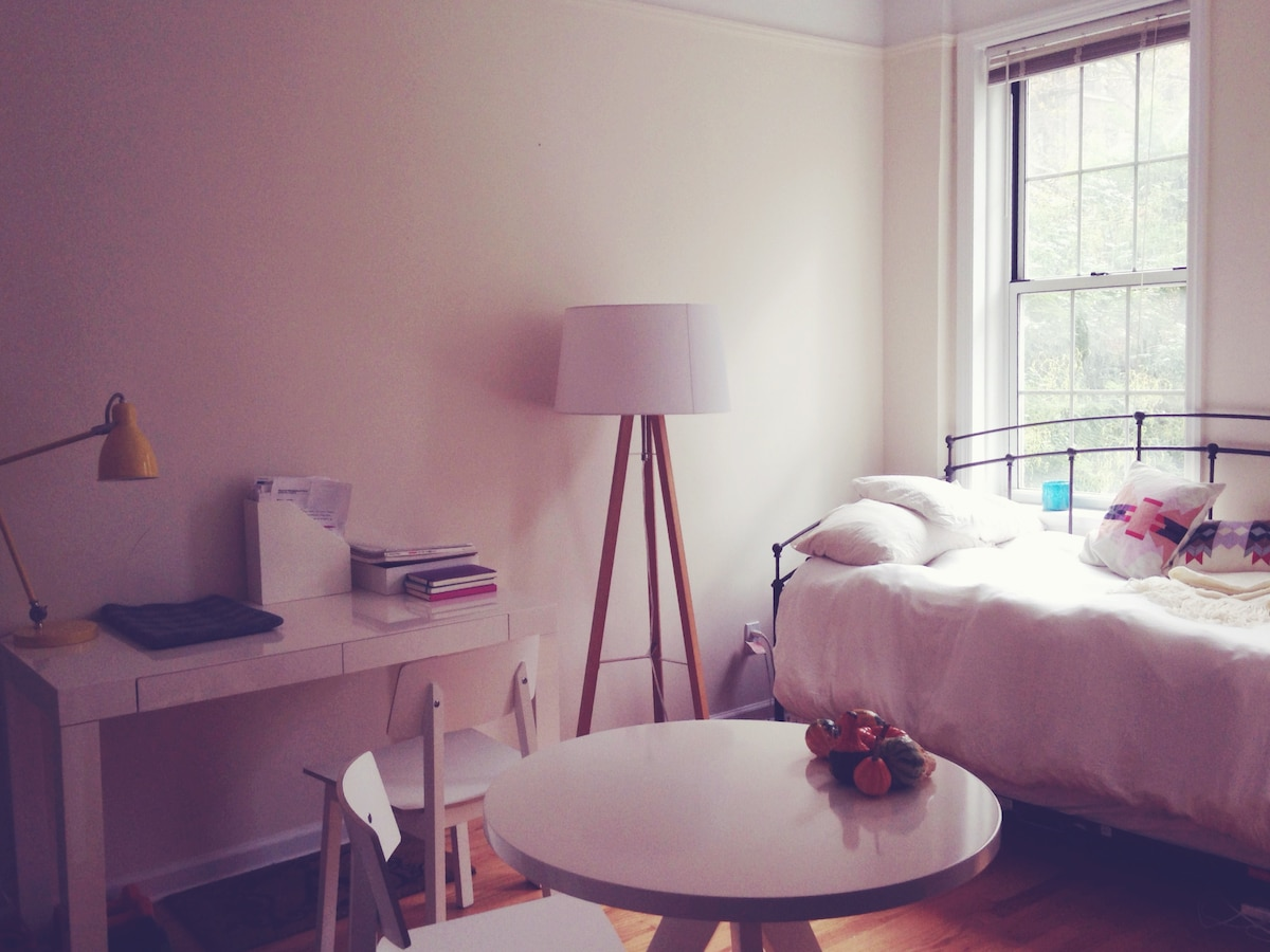 Bright Studio in West Village
