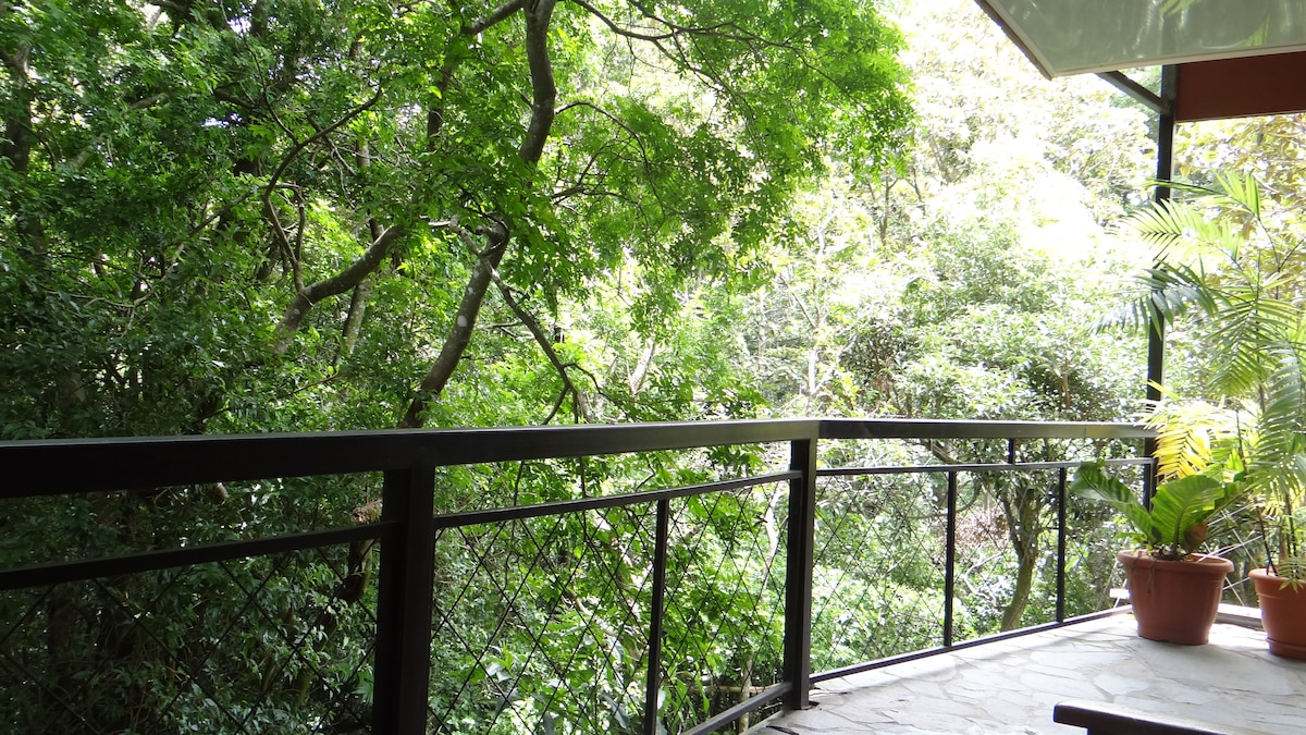 Forest Dreams and Manakin Lodge