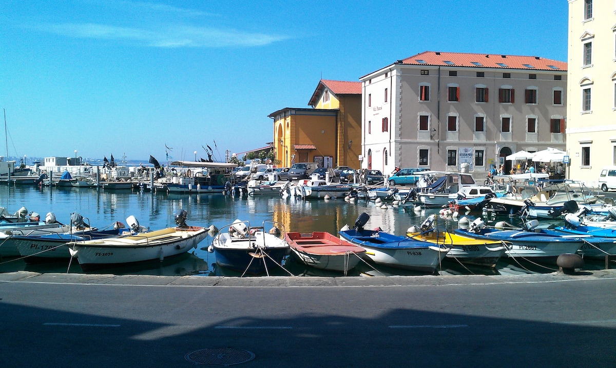 Harbour of Piran near Tartini square with restaurants, cafes, aquarium ...
