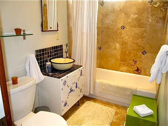 "Remodeled bath with ""rain shower head"""
