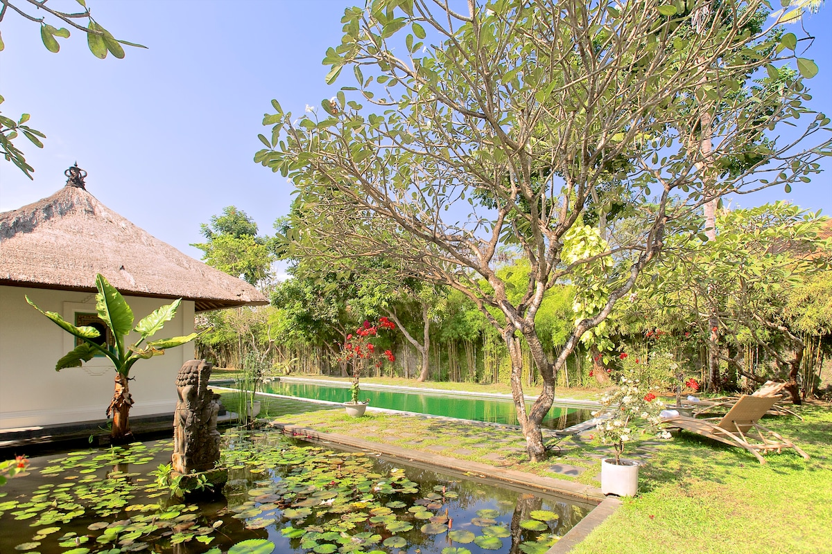 Classic cabana, second lotus-pond in left foreground, your 18-meter pool in back with bamboo perimeter.