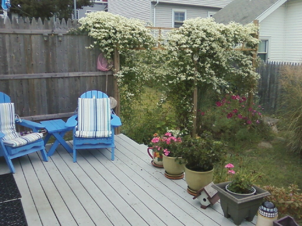 Living room opens to deck and yard. Gas grill in yard ready for use.