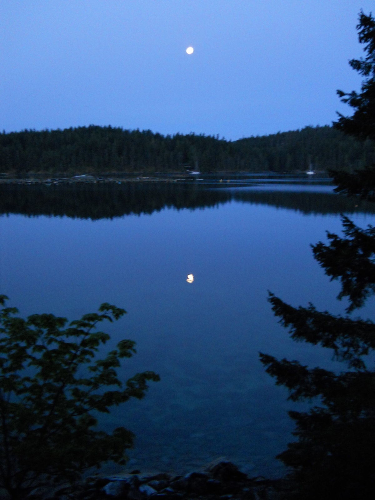 5 A.M. Moon Over Gorge Harbour from Wilcox Lodge
