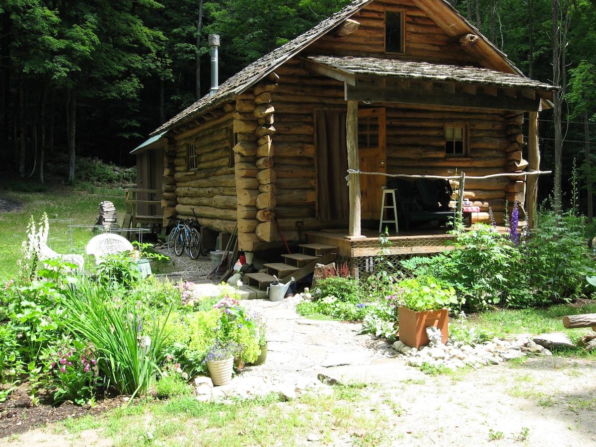 House with Summer Perennial gardens