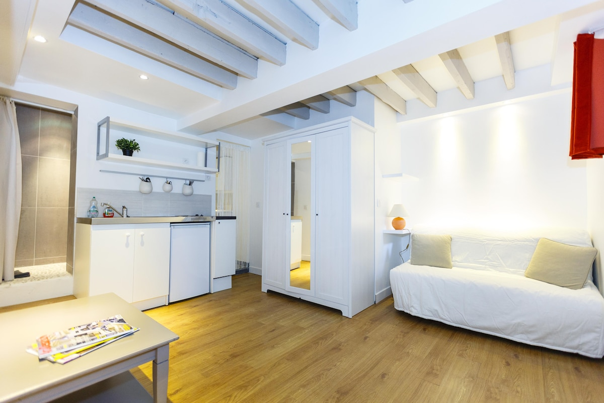 Charming Studio 15 min Paris Center