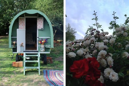 Romantic Dorset Gypsy Caravan - Barraca