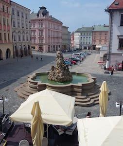 Ubytování v historickém centru Olomouce - Apartemen