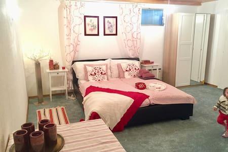 206 Joli studio dans les vignes - Etoy - Apartment