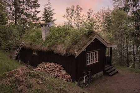 Sommerro - Jonsvatnet. - Hytte
