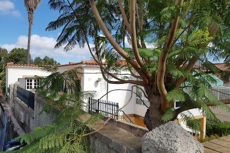 La casita de Cocó - Santa Brígida - Apartemen